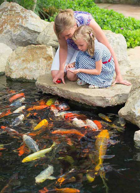 How To Build A Garden Pond Easy Step By Step Guide Butyl Products Ltd Group
